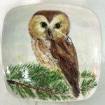 9E Mary Erler Northern Saw-Whet Owl